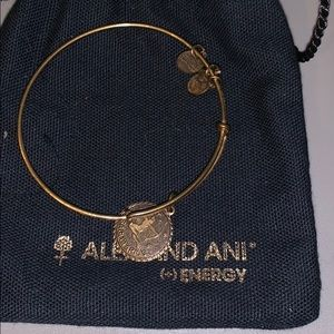 Alex and Ani Sagittarius bracelet